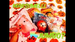 NEW JUMBO MARSHMELLII PIG//INSANE SQUISHYSHOP $40 LUCKY BAG!