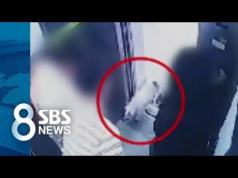 เผยคลิป CCTV เหตุการณ์ที่สุนัขของบ้านซีวอนเข้าไปกัดผู้เสียชีวิตในลิฟท์