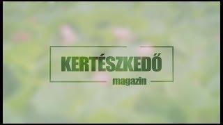 KERTÉSZKEDŐ