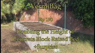 VermiBag  Ep 190 Doubling Height Of Raised Concrete Block Garden W/no Additional Soil