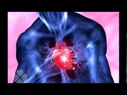 Influencia hipertensión en el cuerpo humano