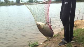 preview picture of video 'Fishing in Nagaland, INDIA'