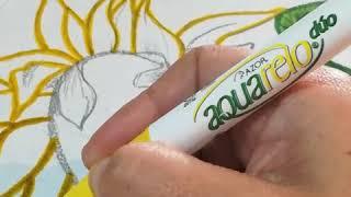 Cómo dibujar una girasol | aprende a cómo dibujar