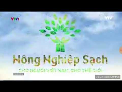 Television (VTV1- Hà Nội)