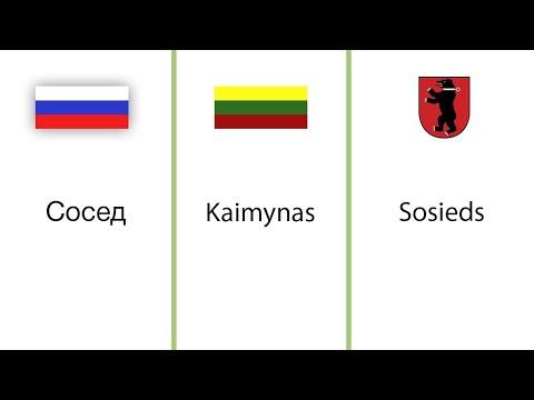 Išmaniosios prekybos sistemos sts kazachstanas