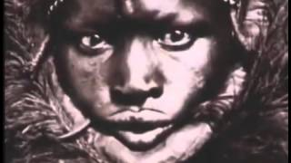 The Story of American Slavery : Documentary on How Slavery Dominated America (Full Documentary)