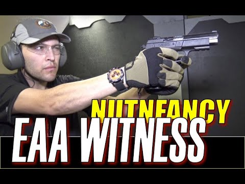 EAA Witness Polymer: A New Favorite?
