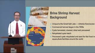 Proposed amendments to the Brine Shrimp Harvest rule related to the COR transfer process