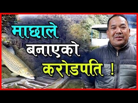 , title : 'ट्राउट माछाले बनाएको करोडपति | Rainbow Trout Fish Farming in Nepal | Kakani