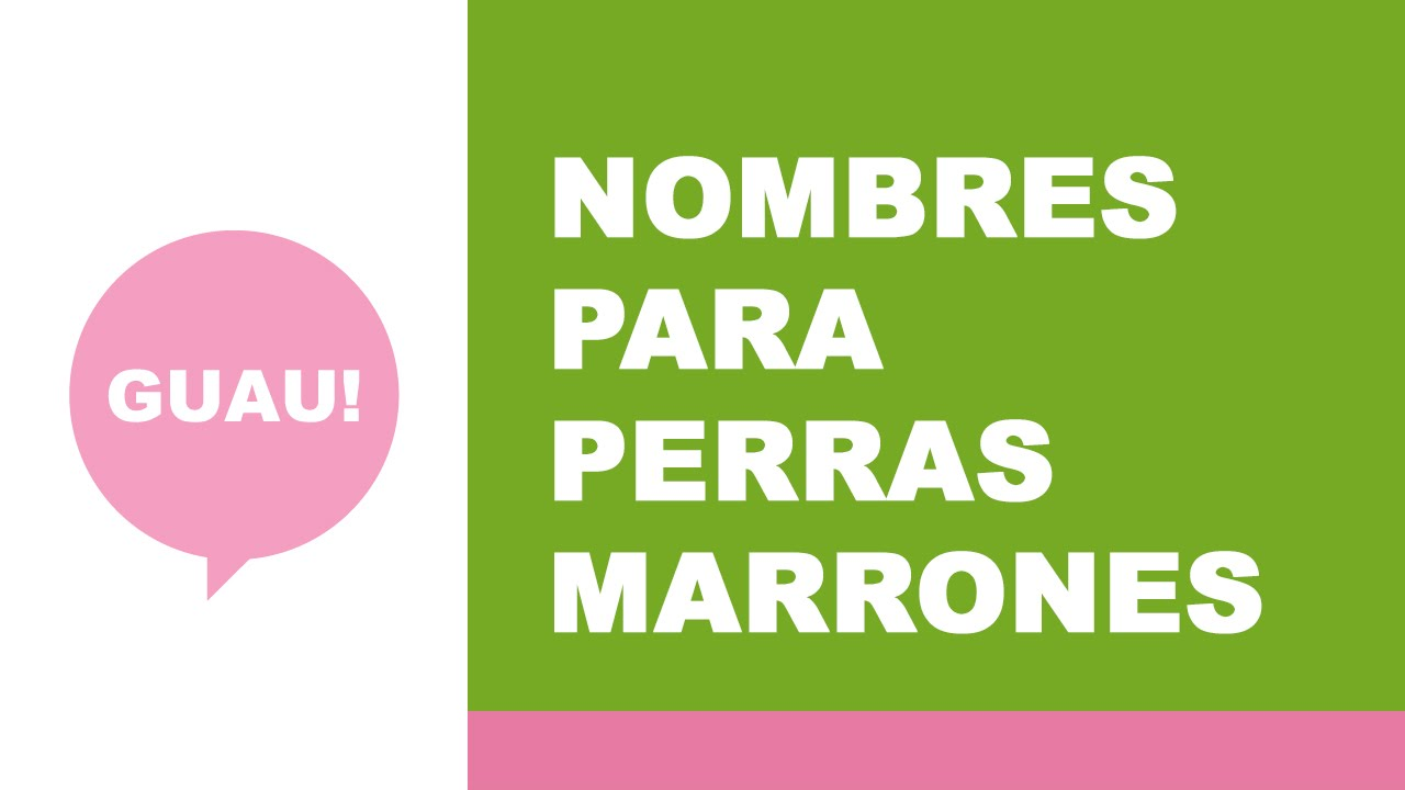 Nombres para perras de color marrón