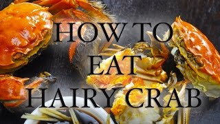 How to Eat Hairy Crab (Mitten Crab)
