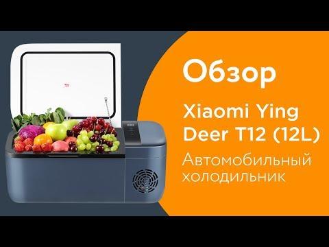 Автомобильный холодильник Xiaomi Ying Deer T12 (12L) — Обзор!