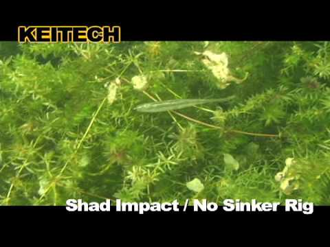 Keitech Shad Impact Yellow Pink 31