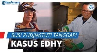 Namanya Trending di Twitter setelah Penangkapan Edhy Prabowo, Ini Tanggapan Susi Pudjiastuti