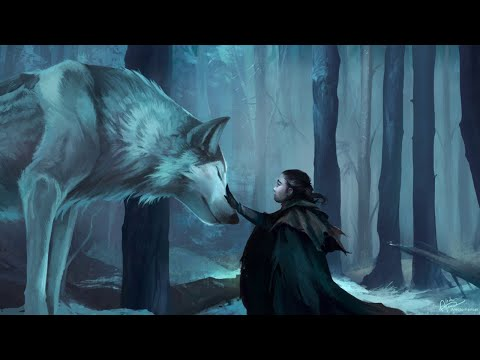 Peter Crowley - The Forest of Wolves | Epic Celtic Adventure