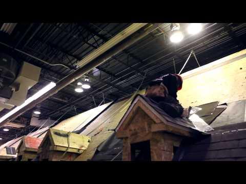 DEP   Pose de revêtements de toiture
