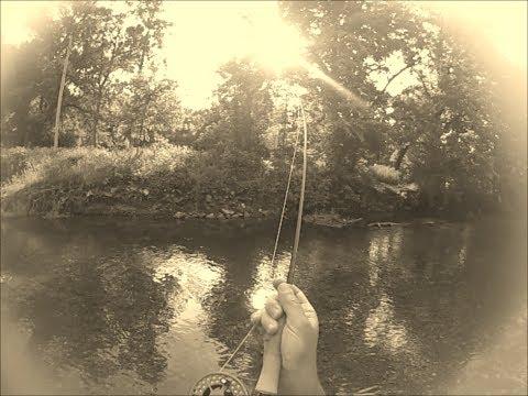 Beautiful day at Roaring River