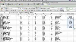 How to Count the Number of Unique Values in a List in Excel : Using Excel