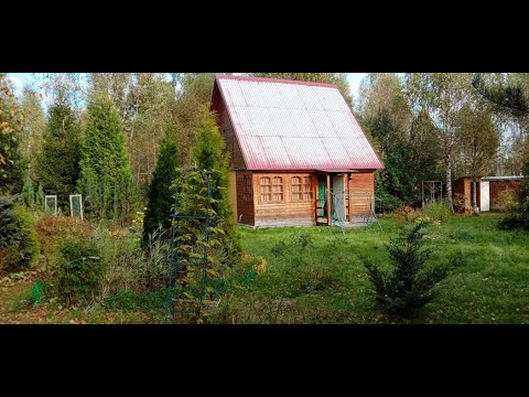 #Недорого #уютная #дача #мебель #СНТ #Березовка #Клин #природа #участок ухожен #АэНБИ #недвижимость