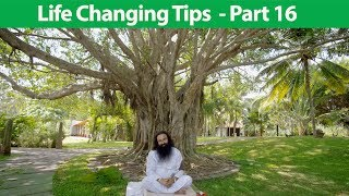 Life Changing Tips Part 16 | Saint Dr MSG Insan