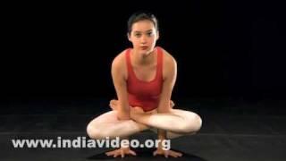 Kukkudasana (The Fowl pose)