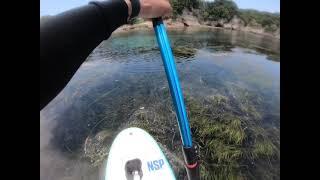 GO 4 SURF