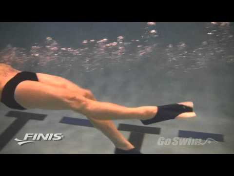 FINIS Zoomers and Z2 Fins: Short Blade Training Fins