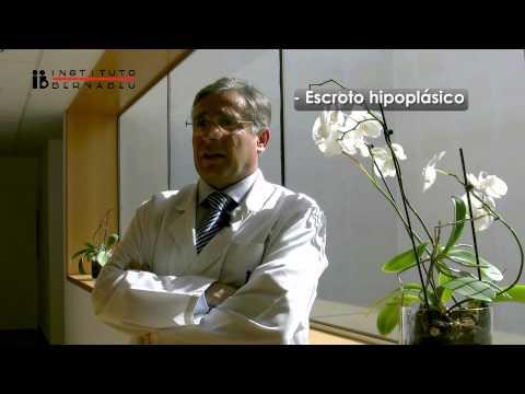 Síndrome de Klinefelter y fertilidad. Unidad del Instituto Bernabeu para su tratamiento