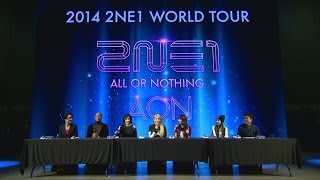 2014 2NE1 WORLD TOUR 'ALL OR NOTHING' PRESS INTERVIEW