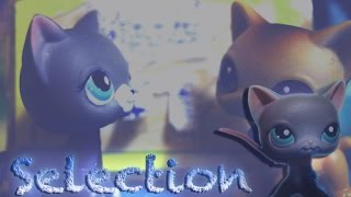 LPS: SELECTION (#2) Actor