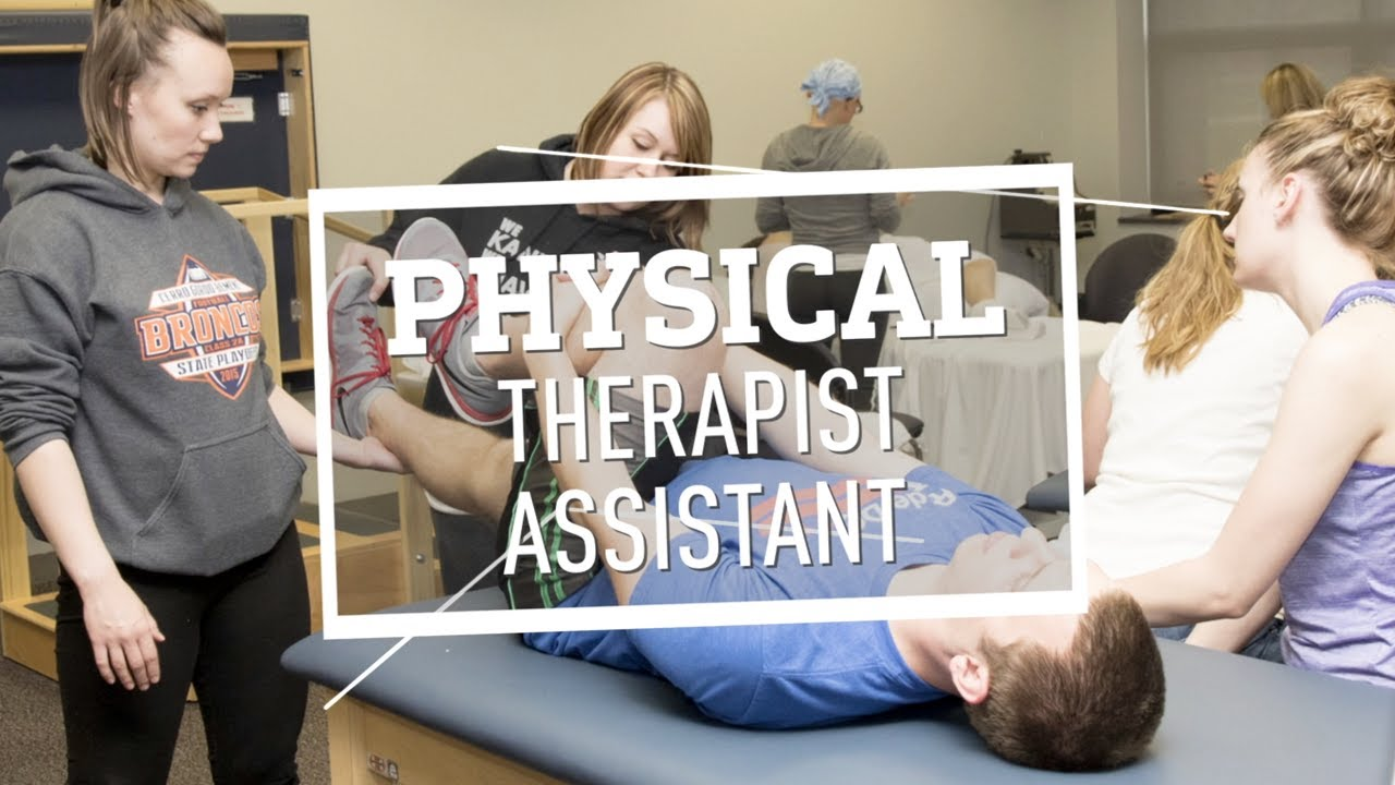Physical Therapy Assistant Education