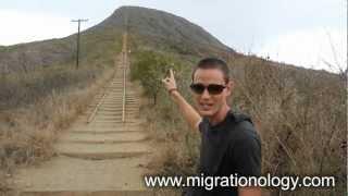 Koko Head Hike - Amazing Hiking Trails In Oahu