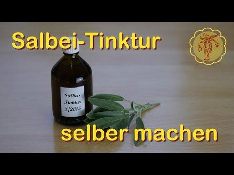 Salbei-Tinktur selber machen