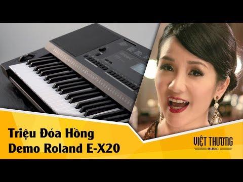 Demo Roland E-X20 | Triệu Đóa Hồng | 059 Folk Ballad