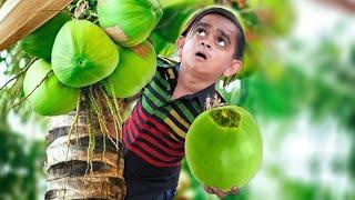 छोटू लटका नारियल के पेड़ पर | CHOTU LATAK GAYA | Khandesh Hindi Comedy | Chotu Comedy Video
