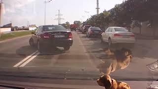 Придурки на дорогах, приколы на дороге