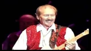 JohnnyB.Goode-ElvisPresley&JamesBurton