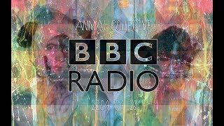 Animal Collective BBC Radio Sessions #1 (26-04-04)