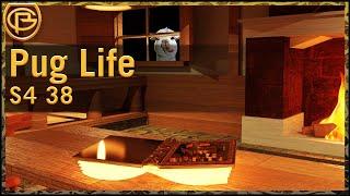 Drama Time - Pug Life