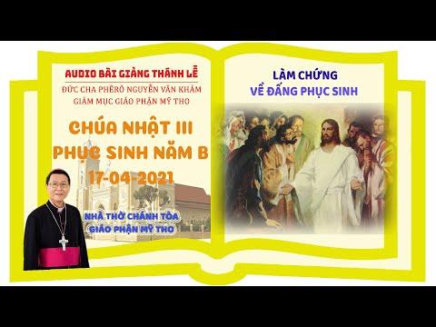 Đức Cha Phêrô suy niệm CN III PS B: LÀM CHỨNG VỀ ĐẤNG PHỤC SINH