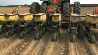 Georgia Corn Planting