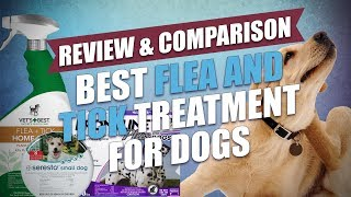Best Flea and Tick Treatment for Dogs Comparison