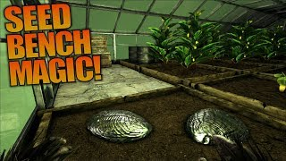 SEED BENCH MAGIC! | ARK: Aberration | Let's Play ARK Aberration Gameplay | S01E20