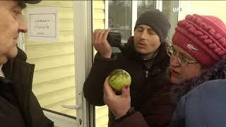 Скандал под Винницей: жители жалуются на черную копоть. Видео