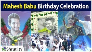 Mahesh Babu Birthday Celebration at Chennai   Dookudu Re-Release