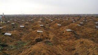 Таинственные массовые захоронения Ростова и Одессы