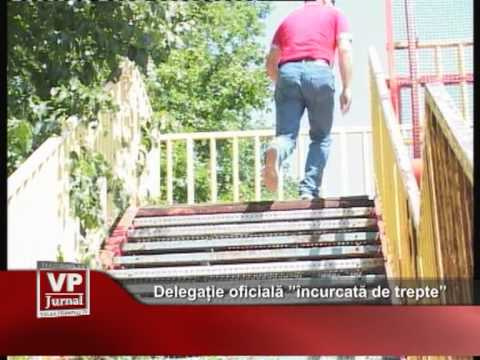 """Delegație oficială """"încurcată de trepte"""""""