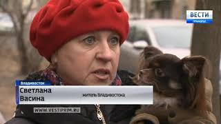 Во Владивостоке ищут подозреваемого в совершении трагического ДТП