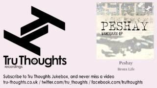 Peshay - Bronx Life