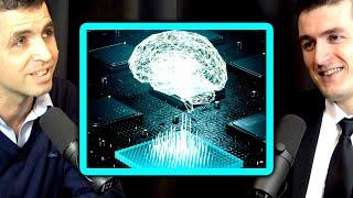 Symbiosis between AGI and the human brain with Neuralink | Manolis Kellis and Lex Fridman